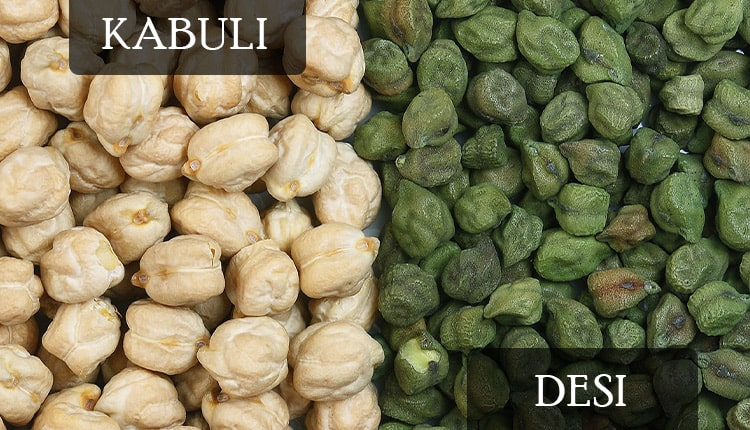 kabuli and desi are two types of garbanzo beans